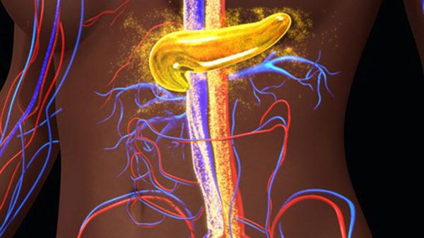 Hormony które mogą przyczynić się do tycia