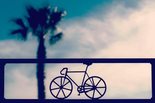 Spalamy tłuszcz jezdzac na rowerze ?