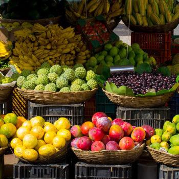 jakie wybrać owoce w procesie redukcji